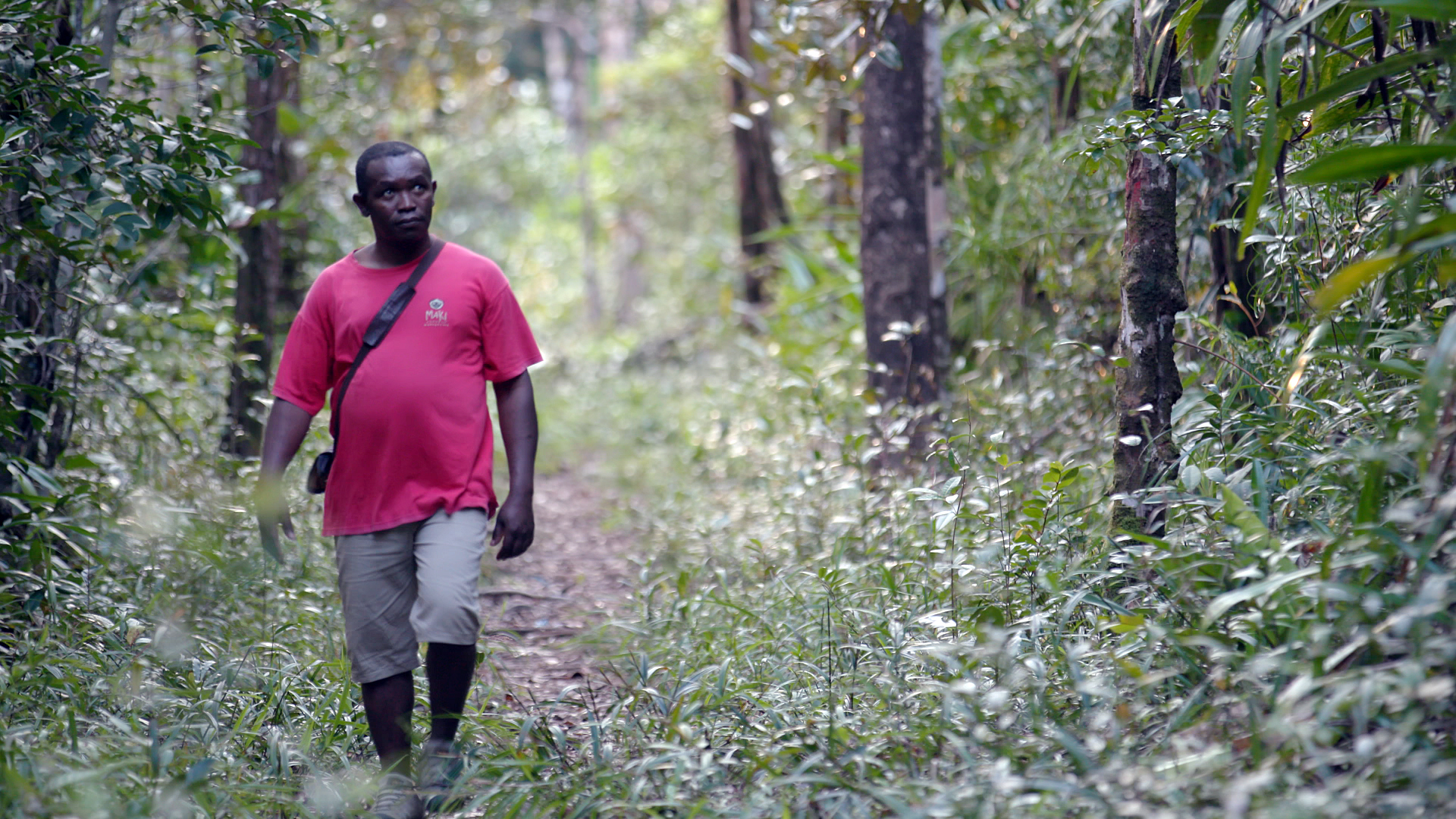 Clovis Razafimalala walking in a forest
