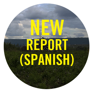 New Report (Spanish) button